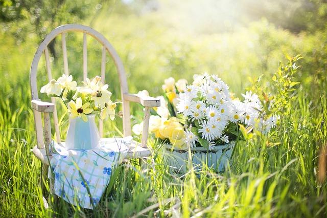 5 tipů pro nezapomenutelné chvíle na zahradě